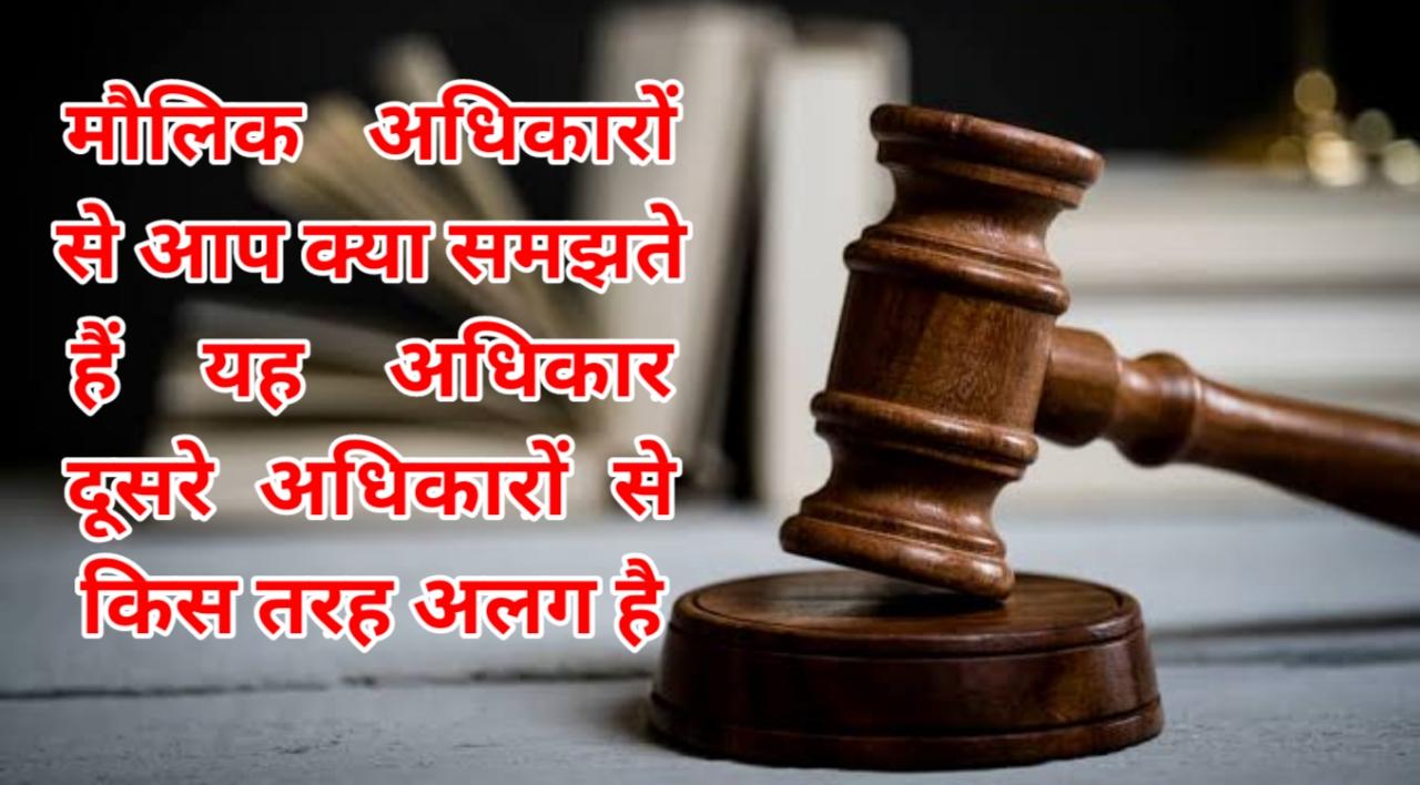 मौलिक अधिकारों से आप क्या समझते हैं यह अधिकार दूसरे अधिकारों से किस तरह अलग है । || What is fundamental rights in india