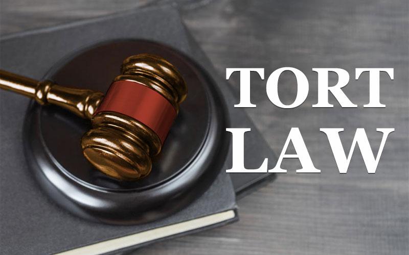 Definition and Development of Tort or What is Torture   अपकृत्य का अर्थ एवं उसकी परिभाषा